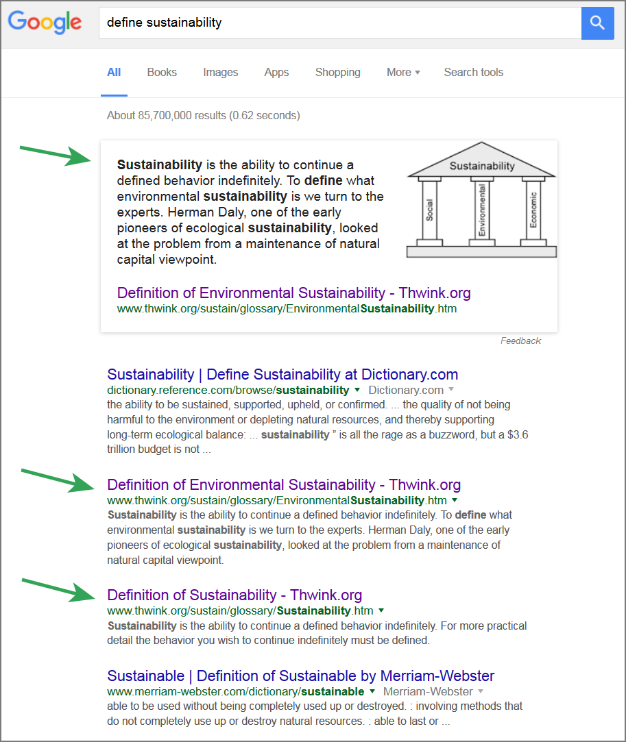 google inc the definition of sustainability essay