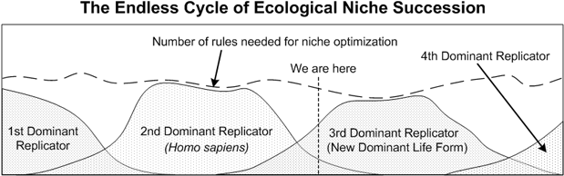 different types of niches