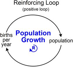 feedback loop tool/concept/definition